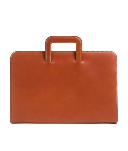 Document case with retractable handles